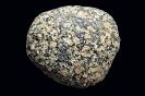 Plutonite