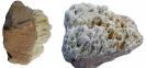 Sandstein mit Quarzgang