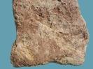 Spurenfossilien Planolites montanus (RICHTER, 1937)
