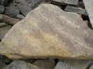 Sandsteinplatte mit Rippelmarken