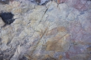 Fossiler Laubhaufen